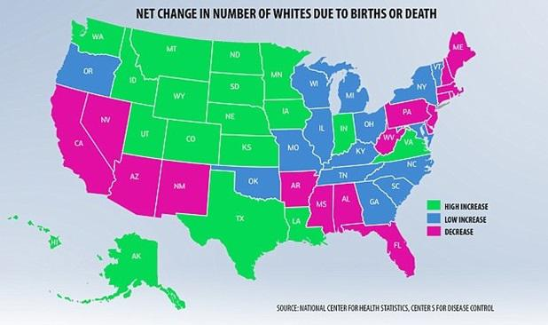 Change in White Demographics